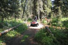 Island Park ATV Trails