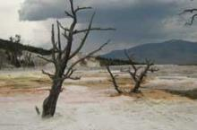 Yellowstone's Sureal Landscapes